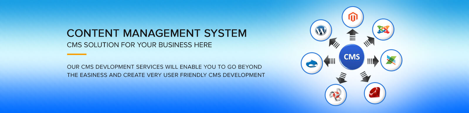 CMS web solutions for your business here